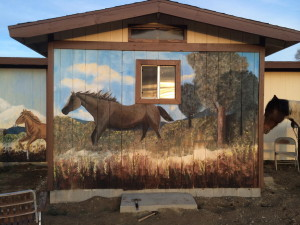 Horse Murals 2 Big Bear CA 2015
