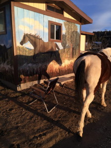 Horse Murals 5 Big Bear CA 2015